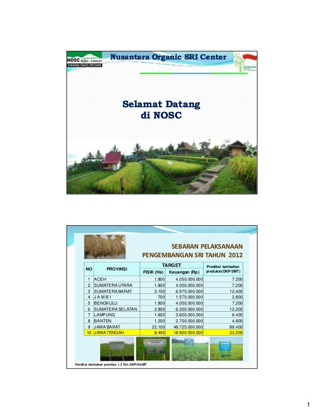 1301 Presentasi NOSC SRI organik
