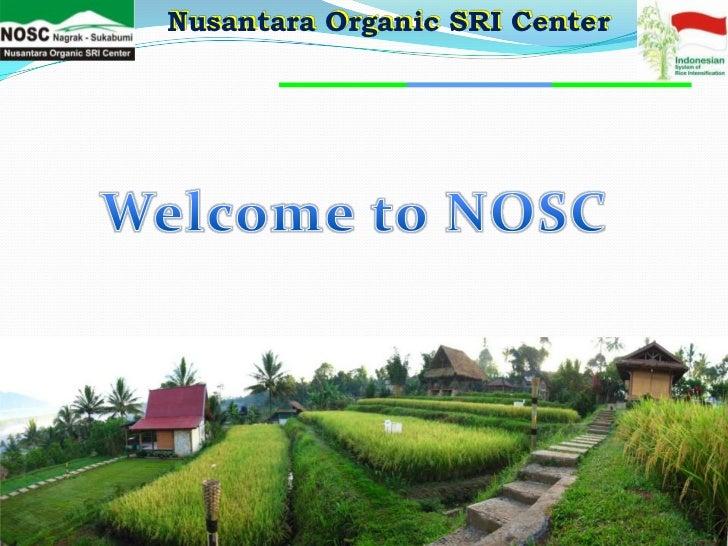 Nusantara Organic SRI Center