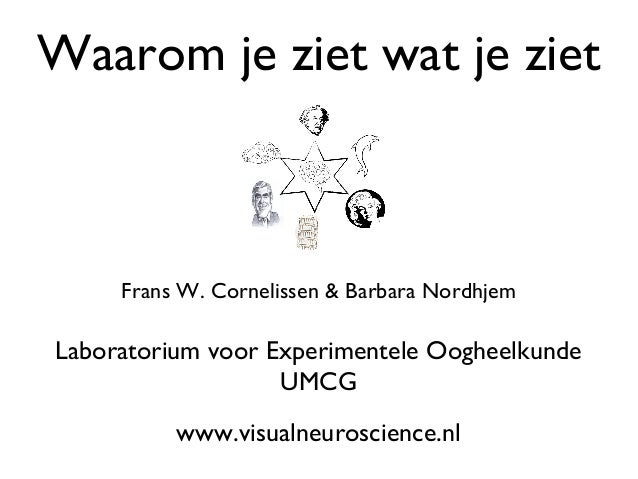 Illusions - in Dutch