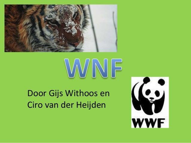 Door Gijs Withoos en Ciro van der Heijden