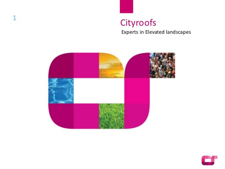 1              Cityroofs              Experts in Elevated landscapes    Presentation