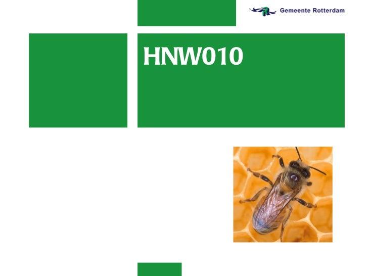 HNW010
