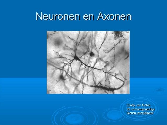 Neuronen en AxonenNeuronen en Axonen Cindy van SchieCindy van Schie IC verpleegkundigeIC verpleegkundige Neural practition...