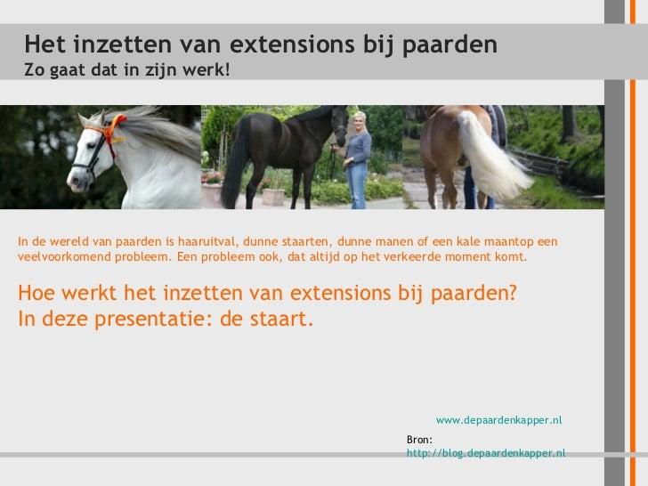 Inzetstaarten en extensions bij paarden - Zo werkt het