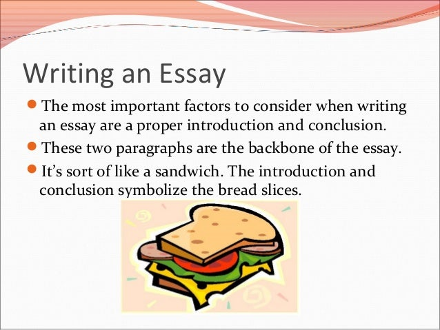 How to write a introduction paragraph?