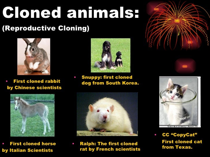 cloning benefits and abuses Human cloning and human dignity an ethical inquiry www equal access to benefits establishes necessary protections against possible misuses and abuses,.