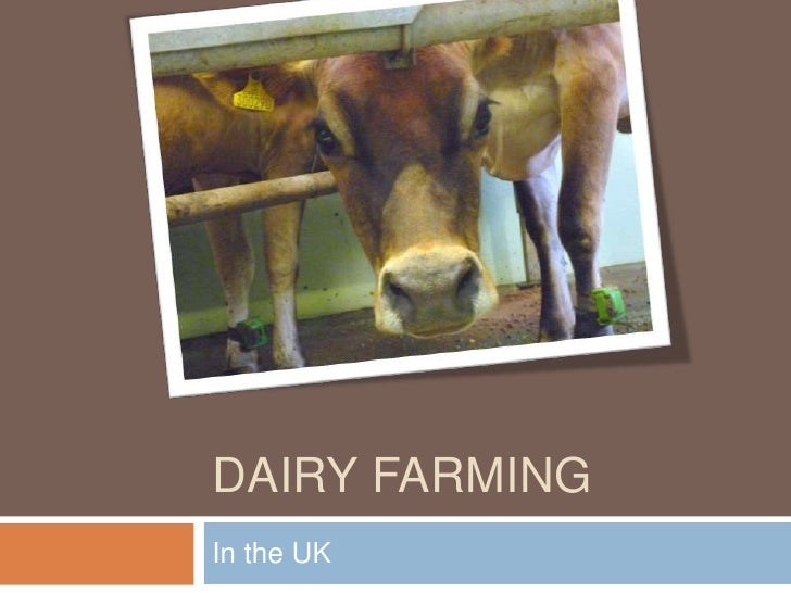 Dairy Farming UK Website
