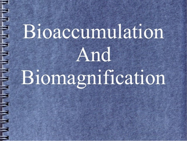 bioaccumulation and