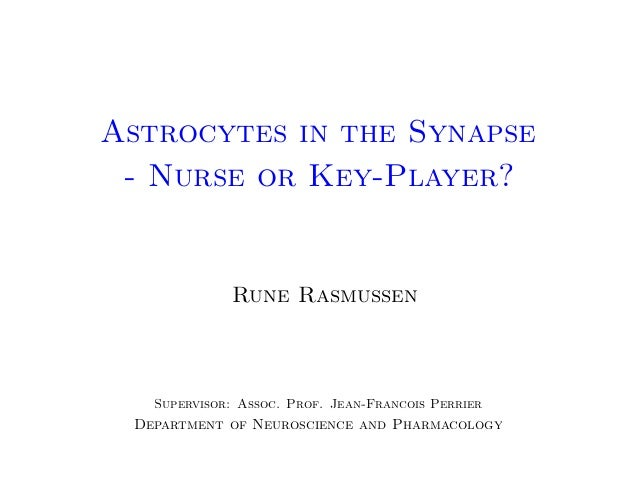 Astrocytes in the Synapse - Nurse or Key-Player?  Rune Rasmussen  Supervisor: Assoc. Prof. Jean-Francois Perrier  Departme...