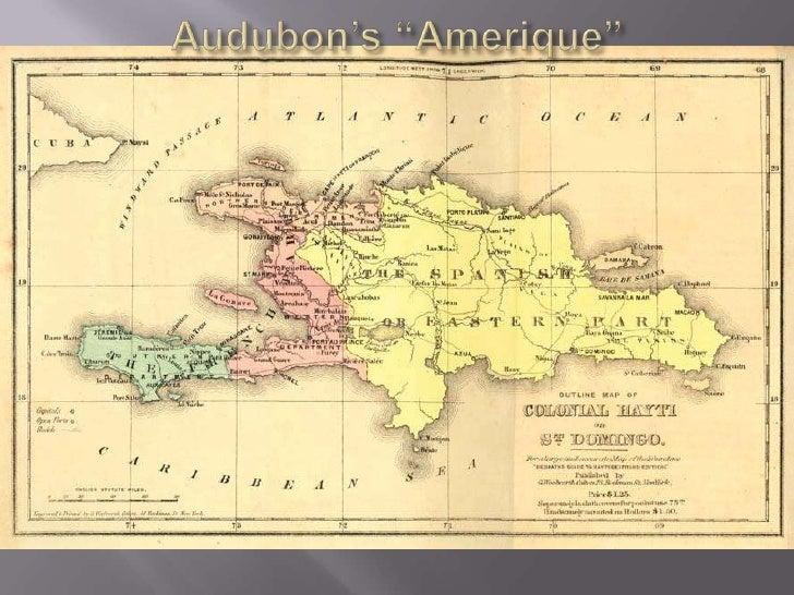 """Audubon's """"Amerique""""<br />"""