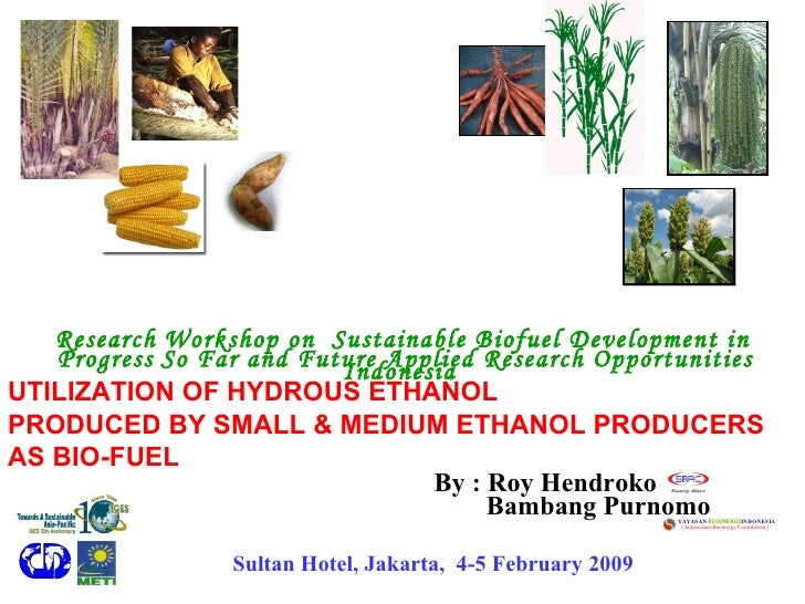By : Roy Hendroko Research   Workshop on  Sustainable Biofuel Development in Indonesia   Progress   So Far and Future Appl...