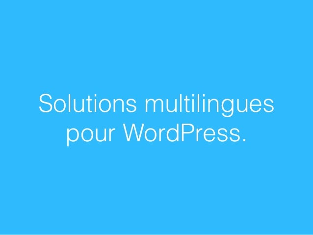 Solutions multilingues pour WordPress.