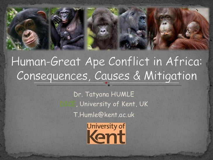 Human-great ape conflict in Africa: consequences, causes and mitigation