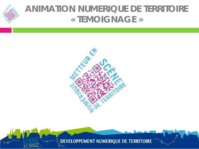 ANIMATION NUMERIQUE DE TERRITOIRE        « TEMOIGNAGE »