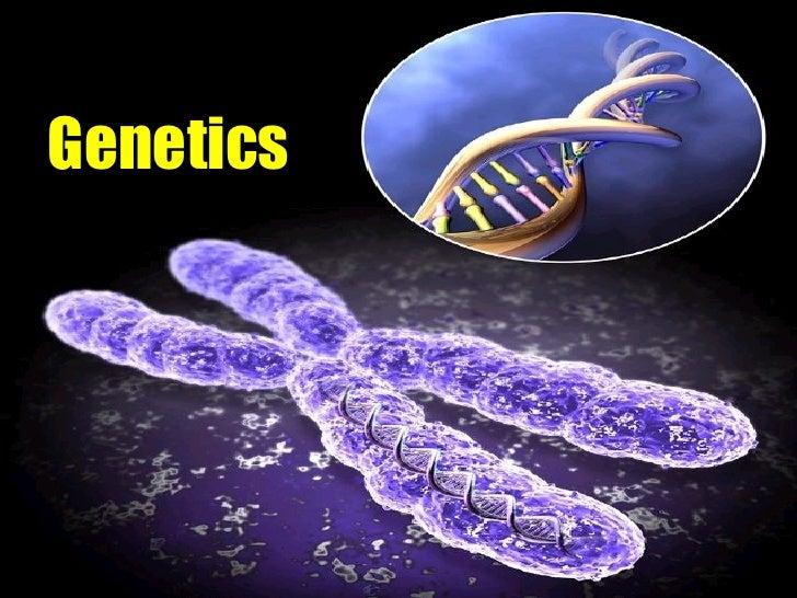 Presentation 02   genetics i
