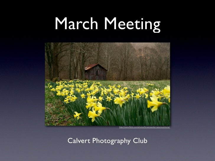 March Meeting                     http://www.flickr.com/photos/forestwander-nature-pictures/      Calvert Photography Club