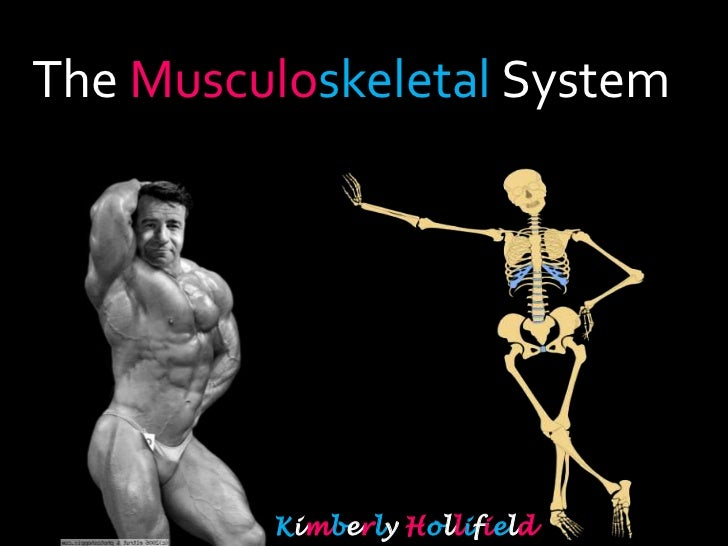 The Musculoskeletal System <br />Kimberly Hollifield<br />