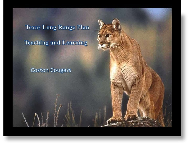Texas Long Range Plan<br />Teaching and Learning<br />Coston Cougars<br />