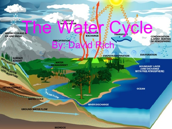The Water Cycle By: David Rich