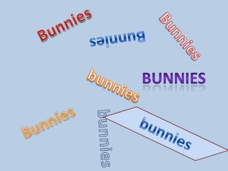 Bunnies<br />Bunnies<br />Bunnies<br />Bunnies<br />bunnies<br />Bunnies<br />bunnies<br />bunnies<br />
