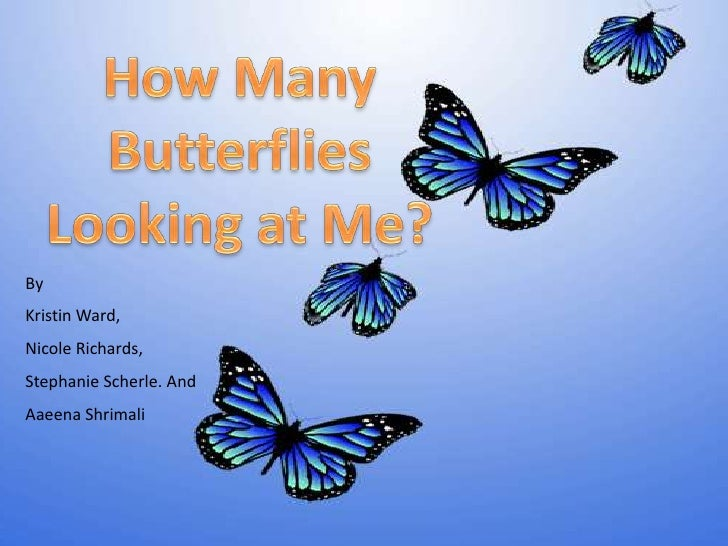 How Many Butterflies Are Flying By Me?