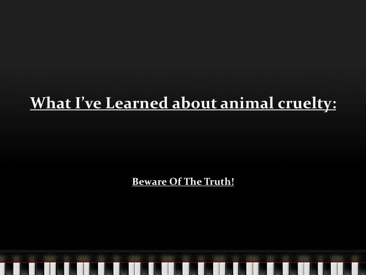 What I've Learned about animal cruelty:<br />Beware Of The Truth!<br />