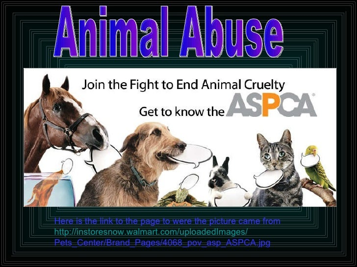 Animal Abuse Here is the link to the page to were the picture came from http://instoresnow.walmart.com/uploadedImages/ Pet...