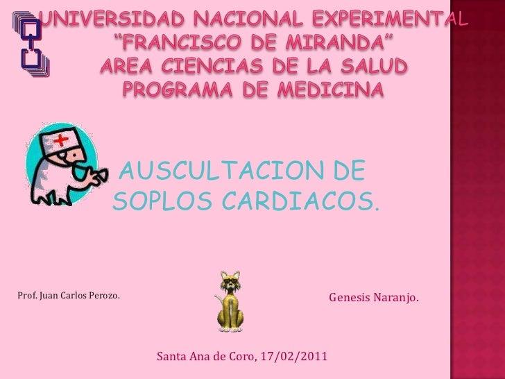 """UNIVERSIDAD NACIONAL EXPERIMENTAL """"FRANCISCO DE MIRANDA""""AREA CIENCIAS DE LA SALUDPROGRAMA DE MEDICINA<br />AUSCULTACION DE..."""
