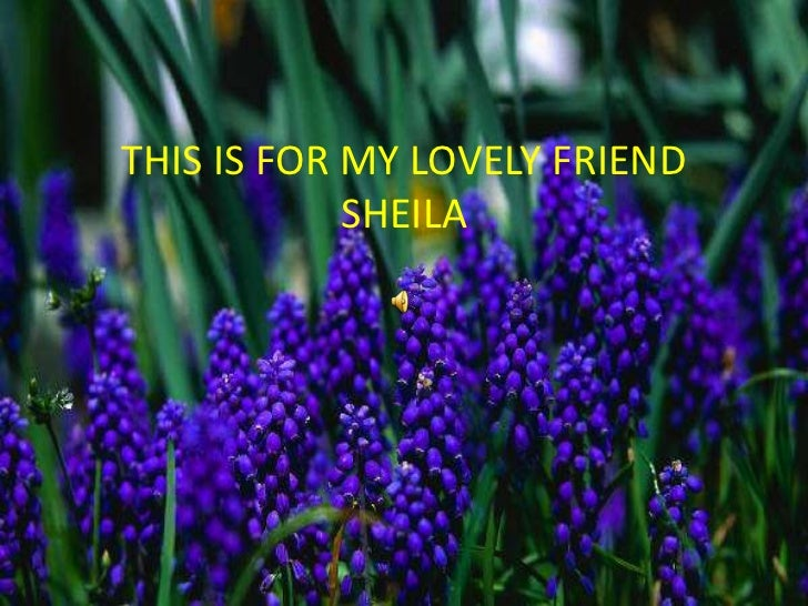 THIS IS FOR MY LOVELY FRIEND SHEILA<br />