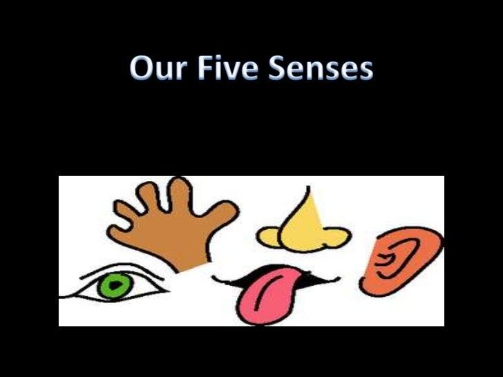 Our Five Senses