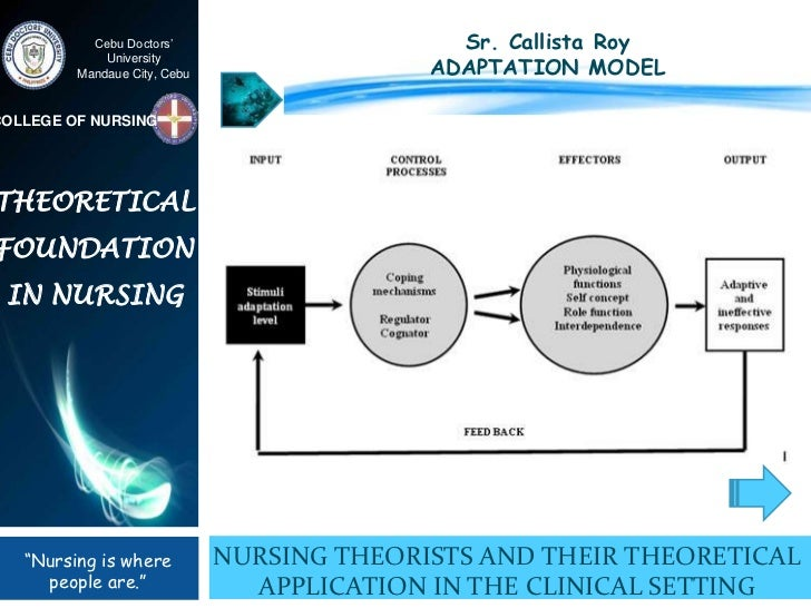 a study of roy adaption theory In 1976, sister callista roy developed the adaptation model of nursing, a prominent nursing theorynursing theories frame, explain or define the practice of nursing roy's model sees the individual as a set of interrelated systems (biological, psychological and social.