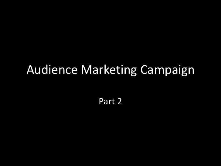 Audience marketing campaign part 2