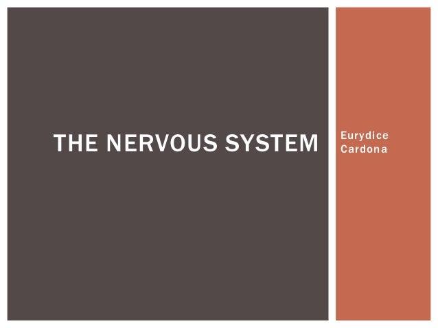 THE NERVOUS SYSTEM   Eurydice                     Cardona