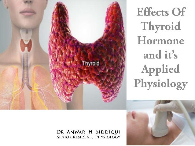 Thyroid hormone effect and mechanism of action