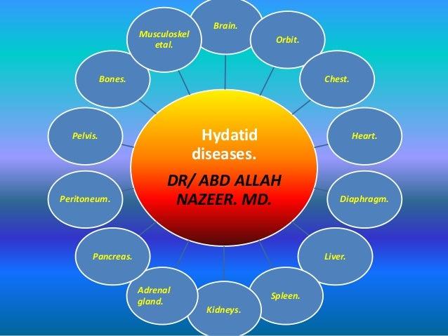 Presentation1.pptx. hydatid disease.