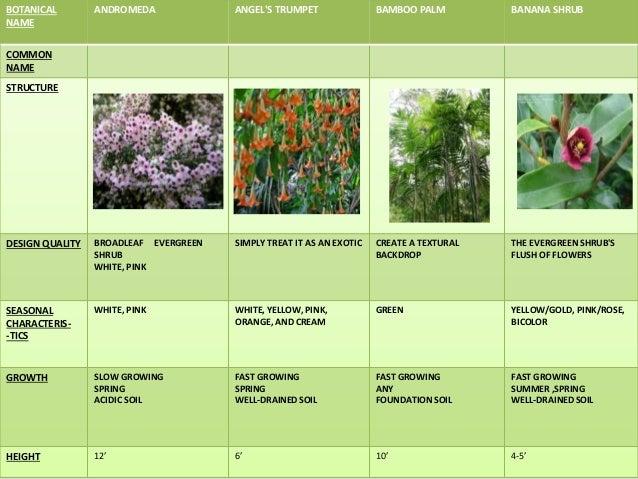 Landscaping Rocks Names : Shrubs names landscaping ideas hide air conditioner pro landscape