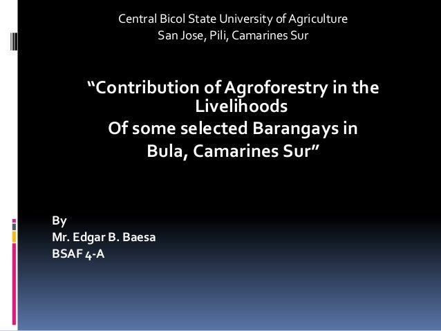 "Central Bicol State University of Agriculture San Jose, Pili, Camarines Sur ""Contribution of Agroforestry in the Livelihoo..."