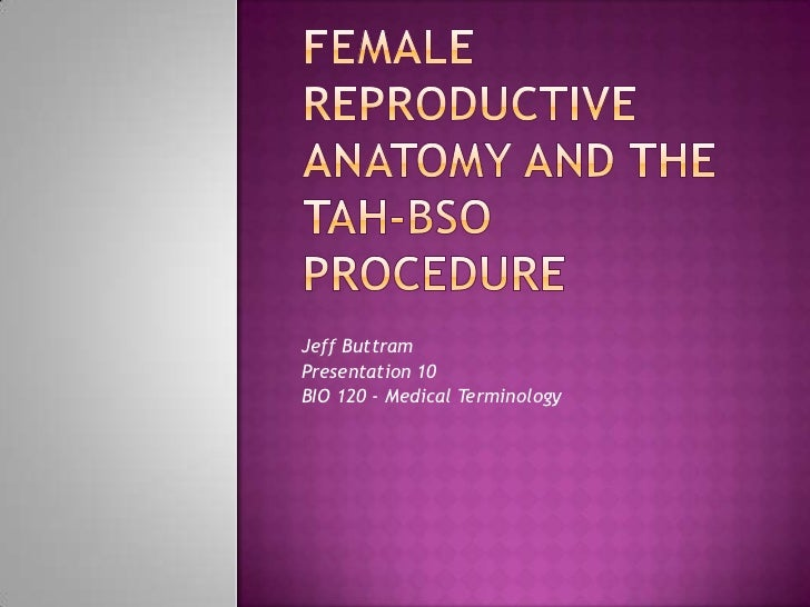 Female reproductive anatomy and the tah-bso procedure<br />Jeff Buttram<br />Presentation 10<br />BIO 120 - Medical Termin...