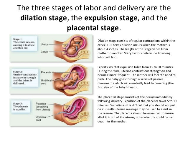Stages Of Labor Worksheet Labor Stages Labor And Delivery – Labor Contractions Worksheet