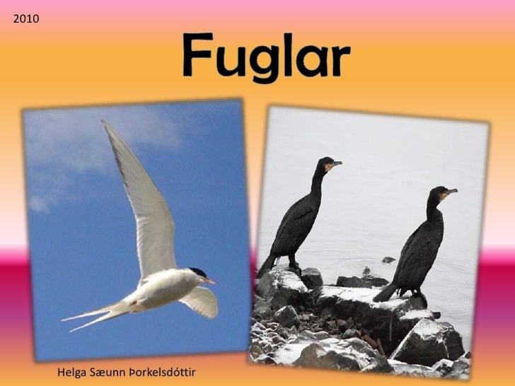 2010<br />Fuglar<br />Helga Sæunn Þorkelsdóttir<br />