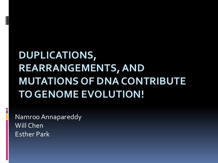 DUPLICATIONS,REARRANGEMENTS, ANDMUTATIONS OF DNA CONTRIBUTETO GENOME EVOLUTION!Namroo AnnapareddyWill ChenEsther Park
