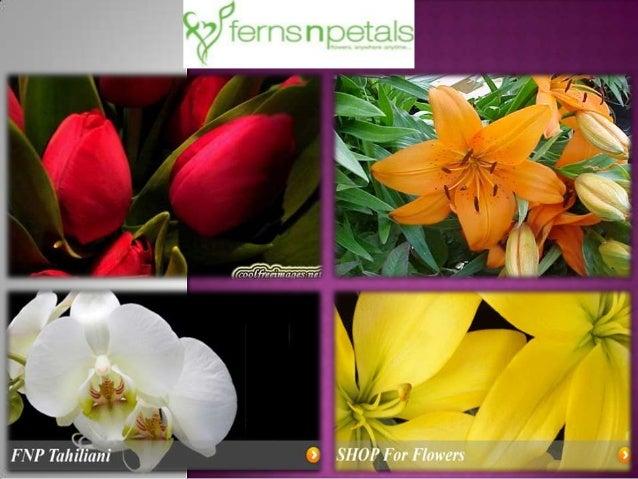Presentation1ferns n petals