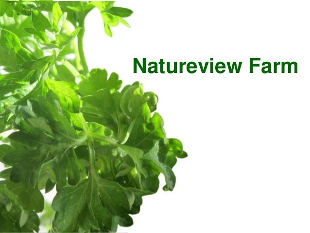 natureview farm case study Read this essay on grennell farm  case study: grennell farm (president  and fellows of harvard college) background | grennell farm is a   natureview farm success, growth strategy and financial analysis of the three  options under.