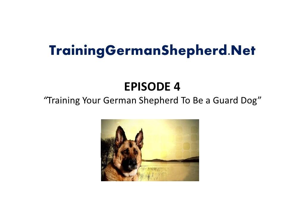 "TrainingGermanShepherd.Net                    EPISODE4                   EPISODE 4 ""TrainingYourGermanShepherdToBea..."