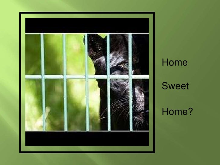 Home<br />Sweet<br />Home?<br />