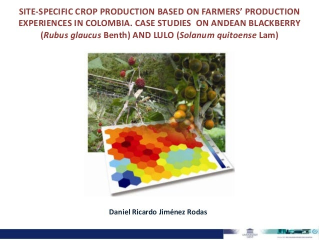 SITE-SPECIFIC CROP PRODUCTION BASED ON FARMERS' PRODUCTIONEXPERIENCES IN COLOMBIA. CASE STUDIES ON ANDEAN BLACKBERRY(Rubus...