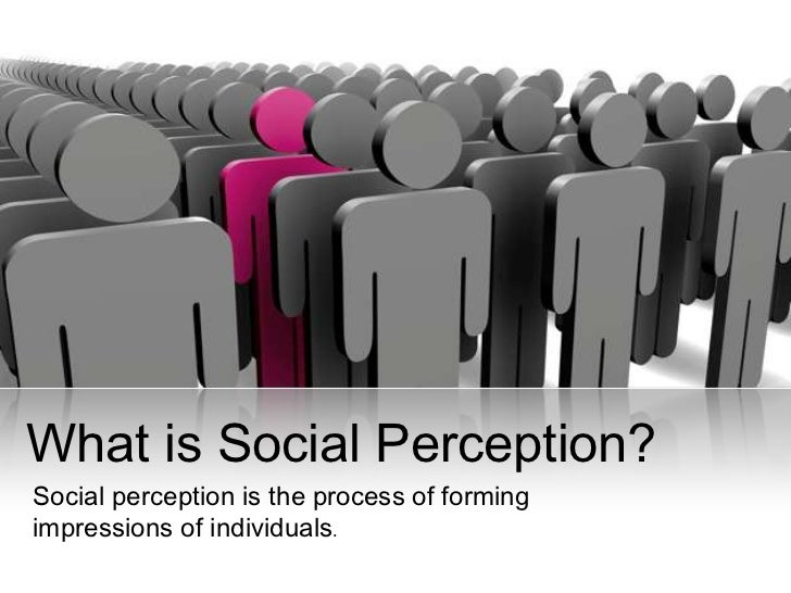 social biasing effects person perception