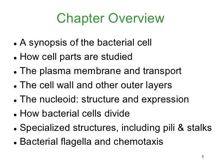 Chapter Overview● A synopsis of the bacterial cell● How cell parts are studied● The plasma membrane and transport● The cel...