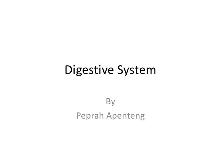 Digestive System         By  Peprah Apenteng