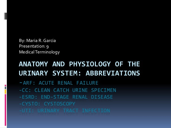 By: Maria R. Garcia<br />Presentation: 9	<br />Medical Terminology<br />Anatomy and physiology of the urinary system: abbr...